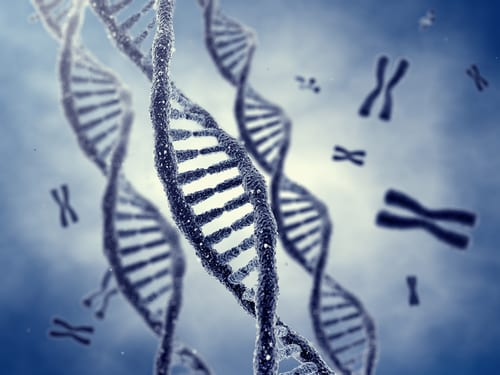 Genetic Marker Linked to Post-Concussive Neurocognitive Function