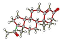 Progesterone May Hold Treatment Implications in TBI and Stroke