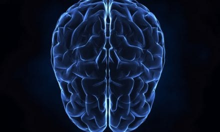 Research Targets Insight into Movement Created in the Brain During TBI