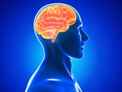 Researchers Investigate Increased Αβ Plaque Deposits in TBI Patients