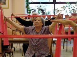 Exercise Program Targets Pain Reduction and Mobility Improvement in Older Adults