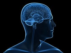 Study Promotes Early Rehab As a Key Player in TBI Recovery