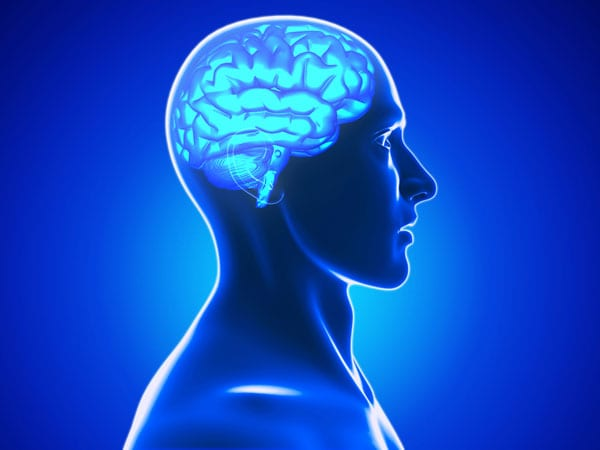 Targeting Abnormal Brain Mechanisms May Lead to Pain Management for Arthritis Patients