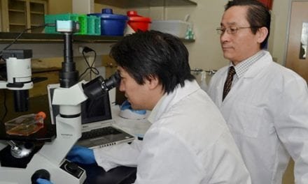 Novel Approach Uses Embryonic Stem Cells to Target MS