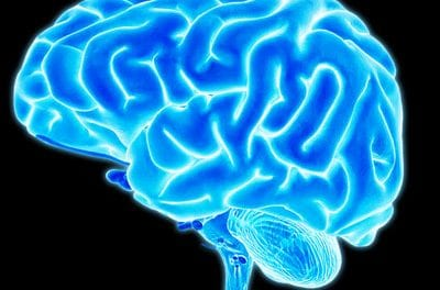 Study Suggests Potential Link Between Mild TBI and Cognitive Dysfunction