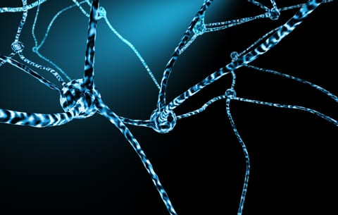 Nerves in spinal cord scar tissue just waiting to grow