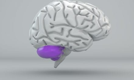 Cerebellum's Higher Role in Cognition and Assistive Technologies