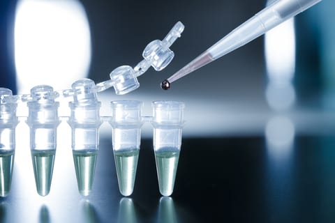 Stem Cells Provide Pain Relief Option for Peripheral Artery Disease