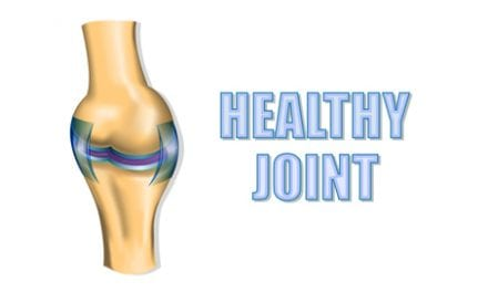 Celebrate the New Year with Healthy Joints