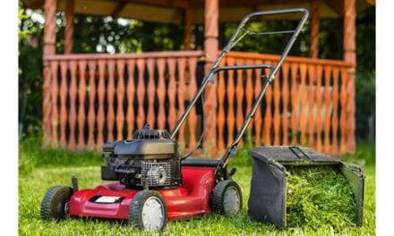 More Than Half of Children Injured By Lawn Mowers Require Amputation