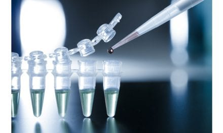 Literature Review Shines Spotlight on Using Stem Cells to Treat Spinal Cord Injury