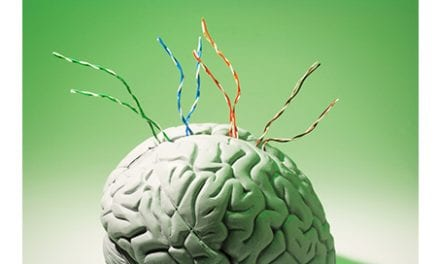 """A """"Reorganization"""" of the Brain's Wiring May Be the Cause of Phantom Limb Pain"""