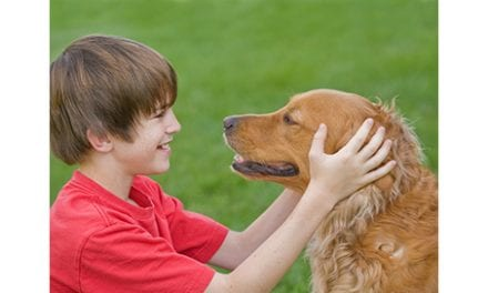 Canine Companions as Adapted Physical Activity Boosters in Kids