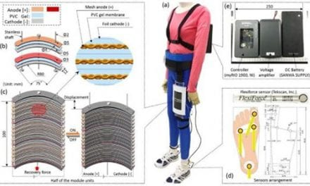 Wearable Robot Provides Artificial Muscle Power