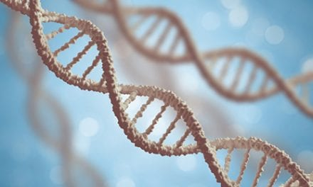 Gene Signature Linked to SCI Severity Could Reveal Treatment Targets