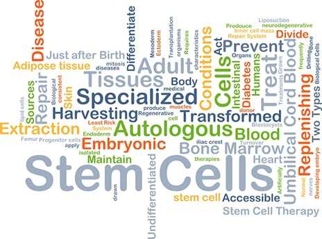 Stem Cell Therapeutics May Do Away with Joint Replacement Surgeries