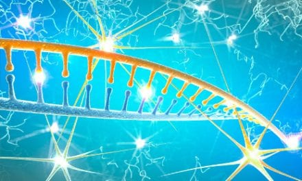 Regenerate Nerves and Treat SCI, Brain Injuries, By Deactivating a Protein