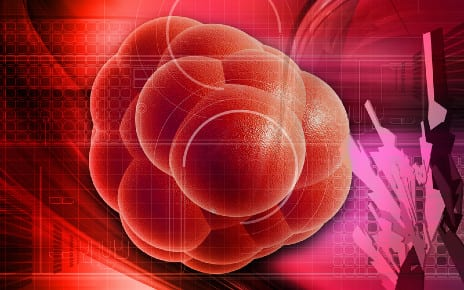 Stem Cells Offer a Promising Option to Improve Post-SCI Function