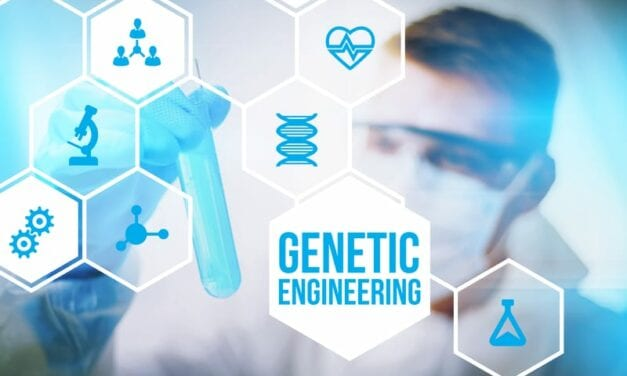 Genetic Engineering Puts Protein Into Overdrive to Help Heal SCI