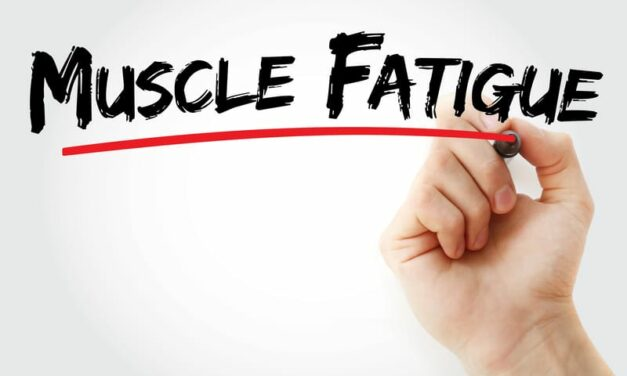 NIH-Funded Study Aims to Understand Muscle Fatigue in Older Adults